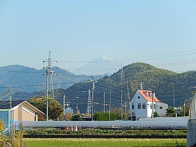 DSCN1314.jpg