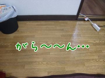 CIMG1881_4_2.jpg