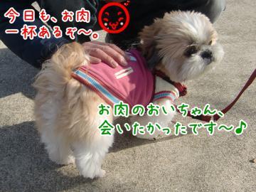 CIMG4513_3.jpg