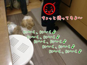 CIMG4591_3.jpg