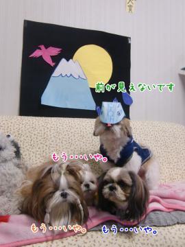 CIMG4638_3.jpg