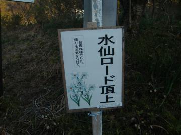 CIMG5898_3.jpg