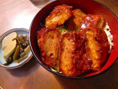 ソースかつ丼 800円 11/04/24