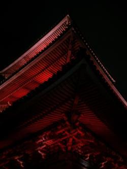 京都 見いっちゃいます