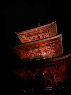 京都 きれいね~
