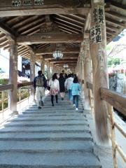 2010 長谷寺