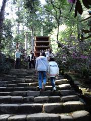 2010 室生寺