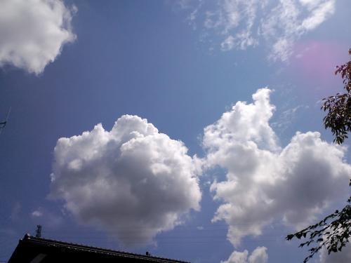20110804-7.jpg