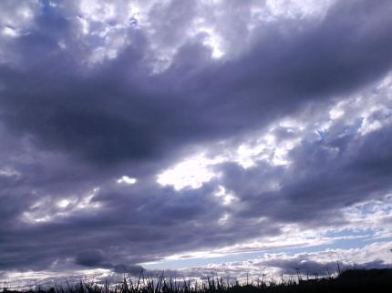 20110905-3.jpg