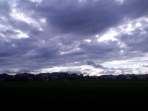 20111119-1.jpg