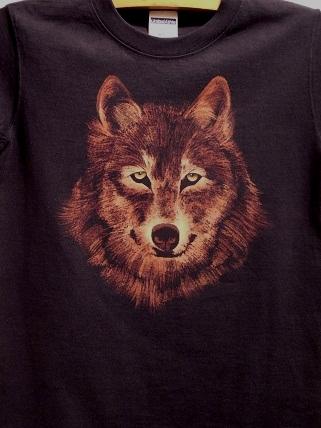 wolf 2010 12 4 (2)