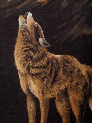 wolf 2010 12 5 (1)