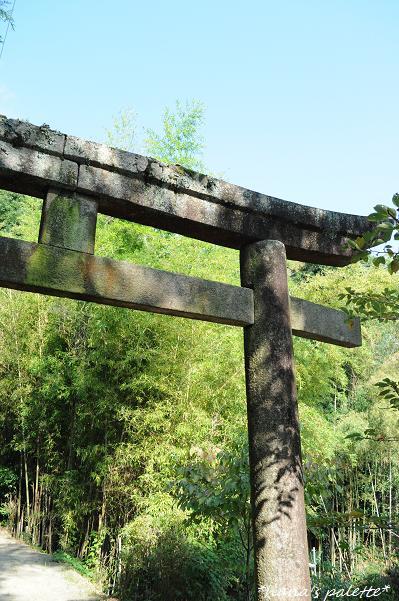 shinkousai2.jpg