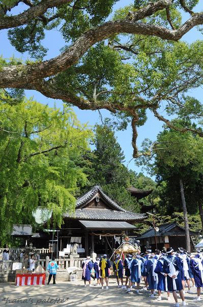 shinkousai4.jpg