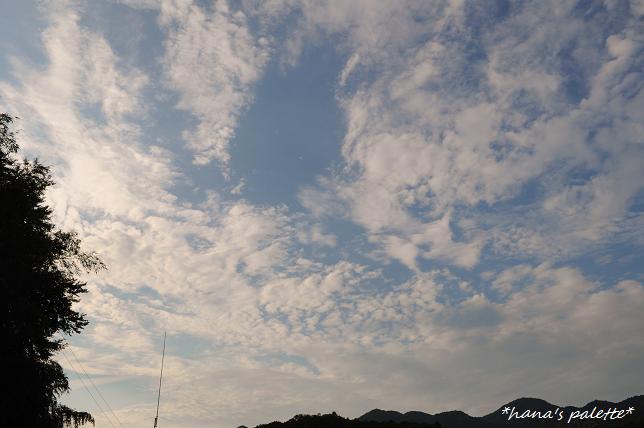 shinkousai8.jpg