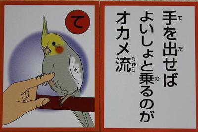 オカメカルタ 4