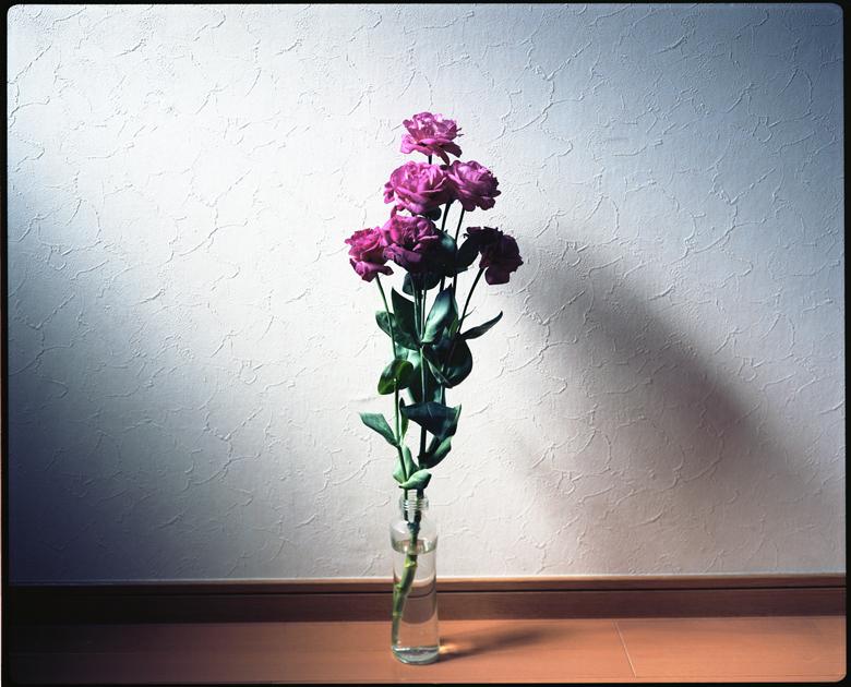 10062009.jpg