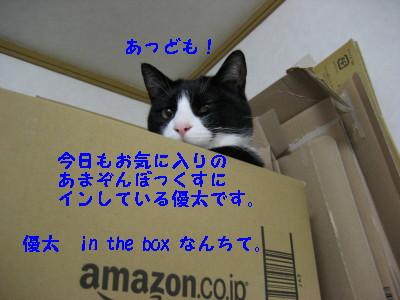 IMG_8513.jpg