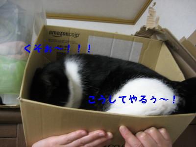 IMG_8627.jpg