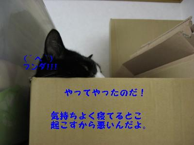 IMG_8636.jpg