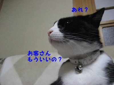 IMG_8680.jpg