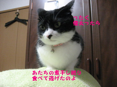 IMG_8815.jpg