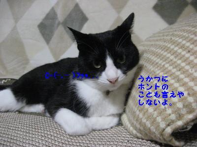 IMG_8877.jpg