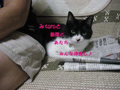 IMG_9207.jpg