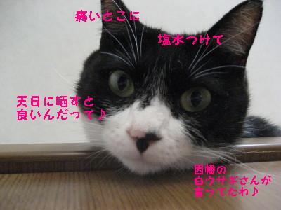 IMG_9421.jpg
