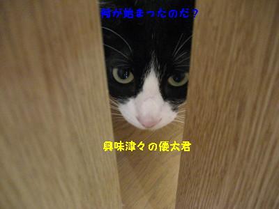IMG_9628_20100909114817.jpg