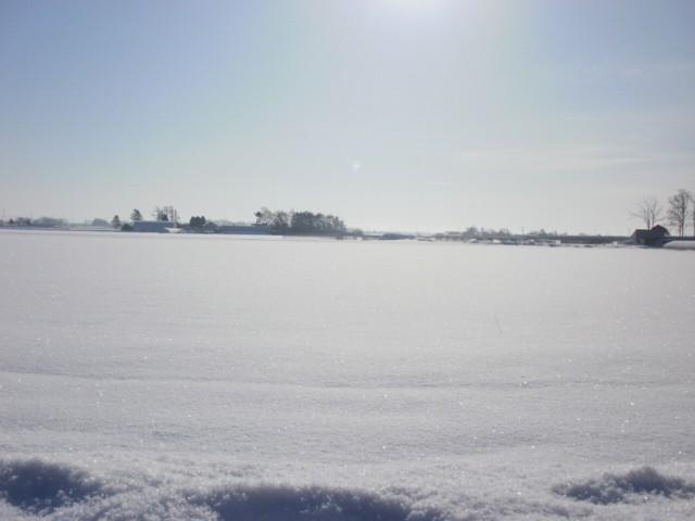 雪2 003