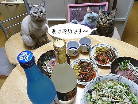 8-9まりちゃんシマジュリちゃん