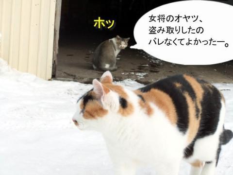7hanakoさん