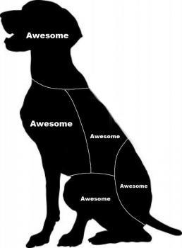 犬が喜ぶツボ