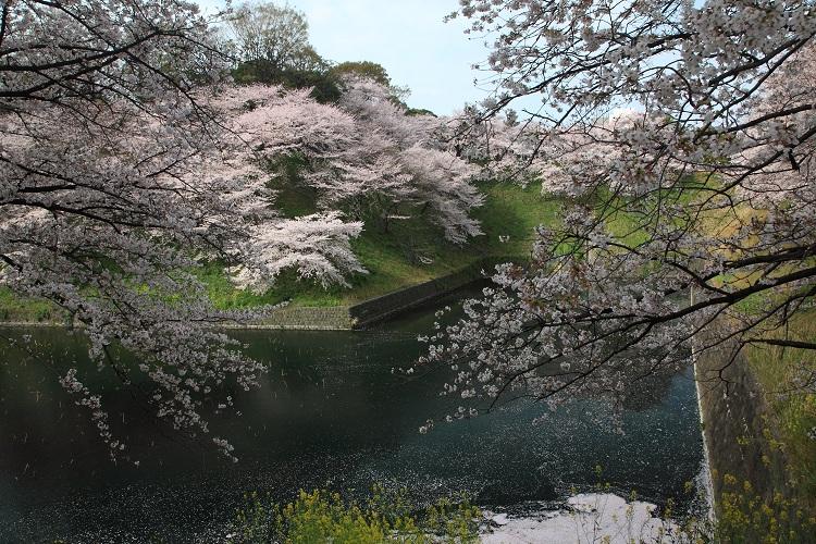 chidorigafuchi_0002f.jpg
