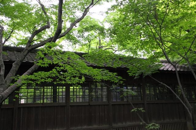 hondoji_0045fu.jpg