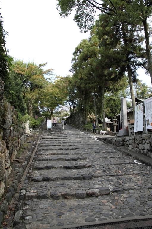 inuyama-sansaku_0024fu.jpg