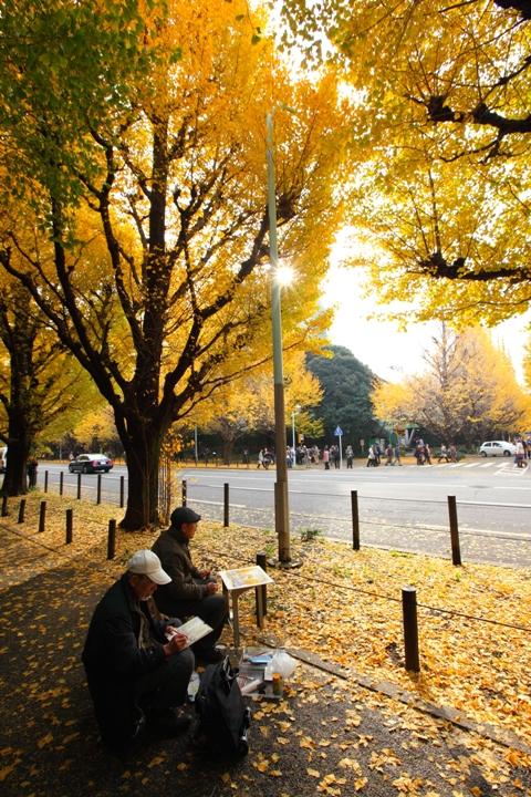 jingu-icho_0007fu.jpg