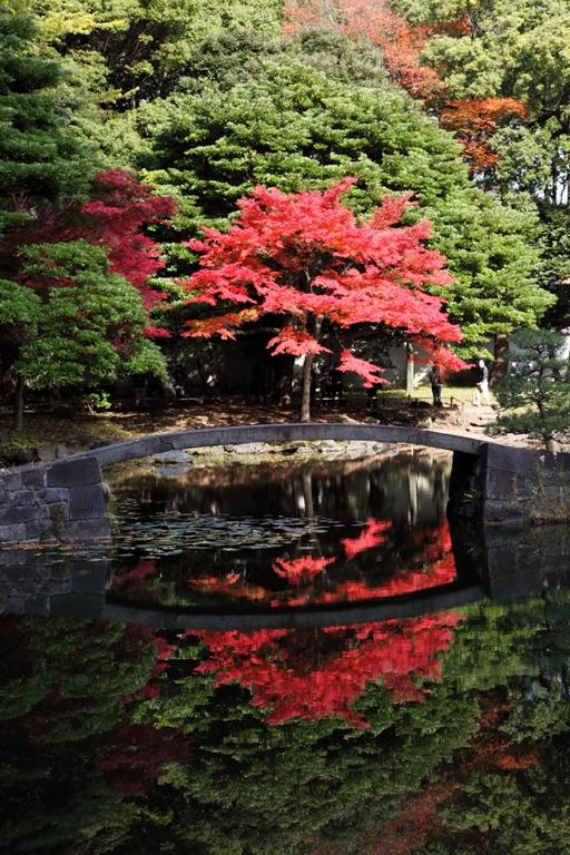 koishikawa_0033fu.jpg