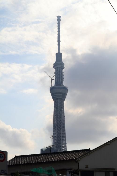 kyojima-sampo_0043f.jpg