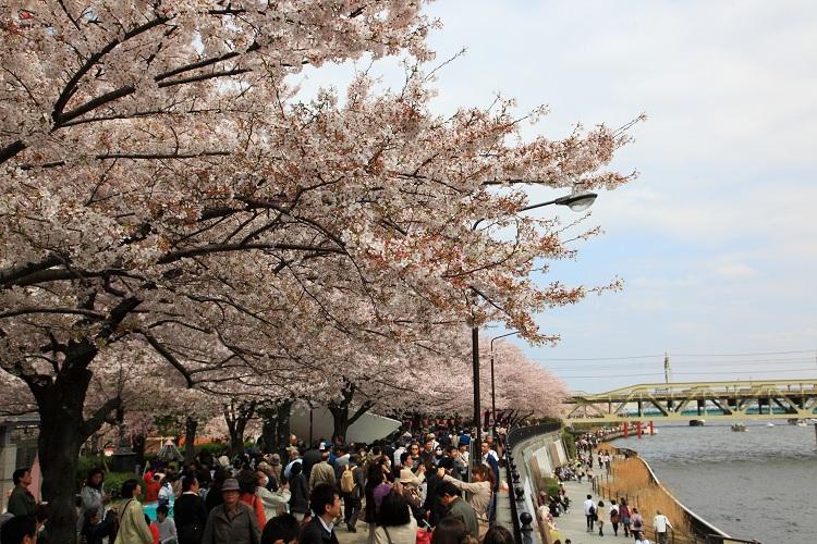 sumida-park_0005f.jpg