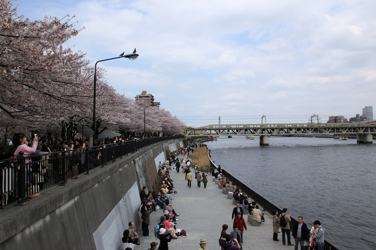 sumida-park_0021f.jpg