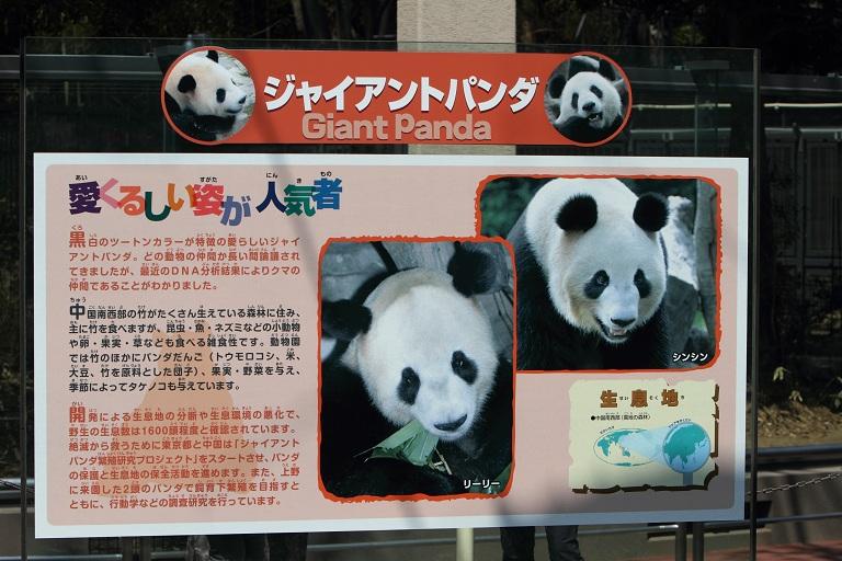 ueno-zoo_0049f.jpg
