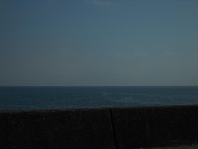 この海なっていう海?太平洋だよね!