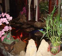 茶芸店 2