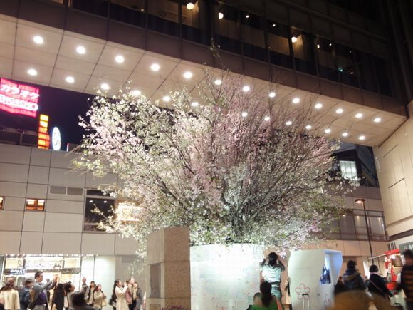 桜有楽町駅