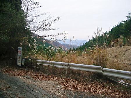 天引林道へ
