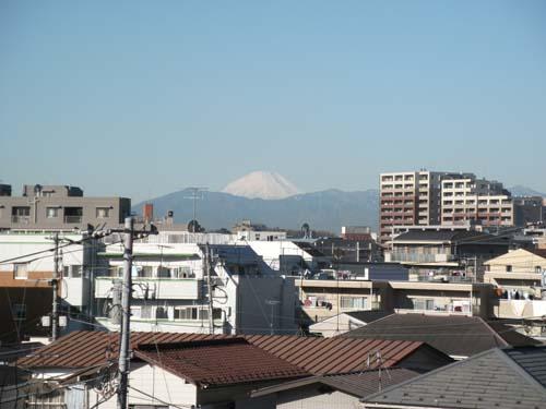 2011_0201AB.jpg