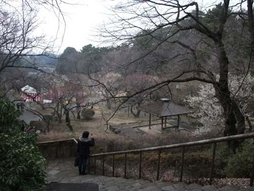 2011_0205AJ.jpg