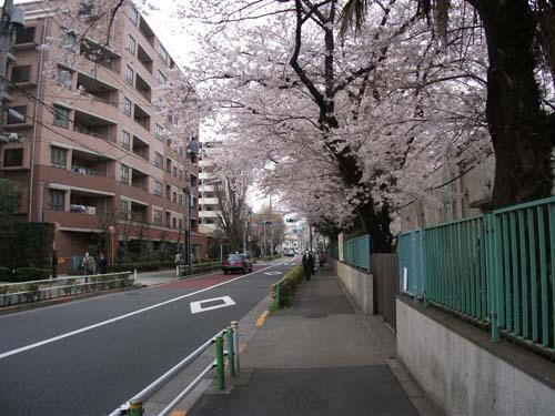 2011_0407AP.jpg